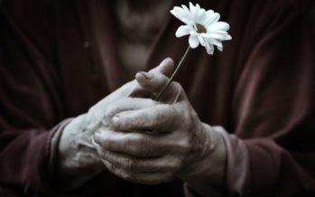 Қостанайда 87 жастағы әжейді белгісіз біреулер айуандықпен өлтіріп кетті