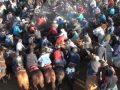 Көкпар тартқан қазақтардың сұмдық төбелесі елдің ашуын келтірді (ВИДЕО)