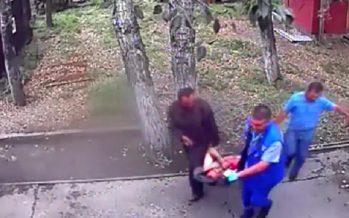 Аю өзіне сүт бермек болған ер адамның қолын тістеп жұлып алды (видео)
